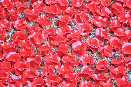 London, UK - 13 August 2014: Poppies at The Tower of London for rememberance Sunday