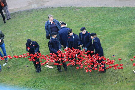 London, United Kingdom - 13 August 2014: Almost 900,000 ceramic poppies are installed at The Tower of London