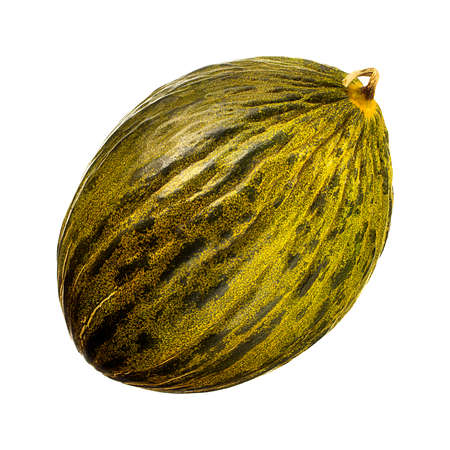 Melon isolated on white background. With clipping path.