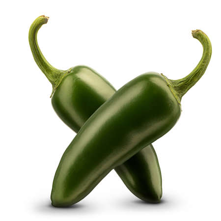 Hot green chili or chilli pepper isolated on white background.