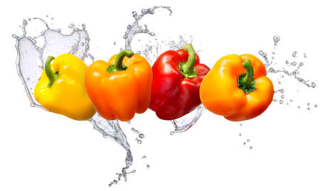 Water splash and vegetables isolated on white backgroud. Fresh bell pepper