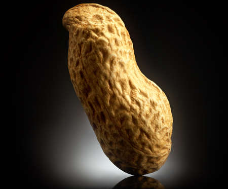 Peanut on black background with reflection. Close-up or macro. Health concept Stock Photo