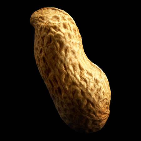 Peanut isolated on black background with reflection. Close-up or macro. Health concept