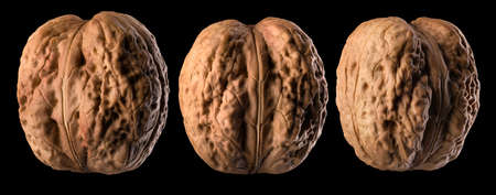 Set of whole walnuts isolated on a black background. Banque d'images