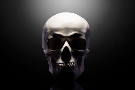 Front view of gypsum model of the human skull isolated on black