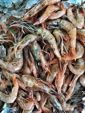 Pile of shrimps on ice