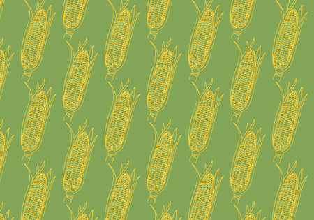 Vector hand drawn Corn cobs pattern in yellow color on green background