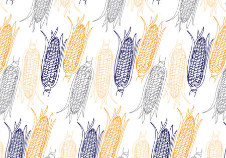 Vector hand drawn Corn cobs pattern in yellow, blue, orange and gray colors palette on white background
