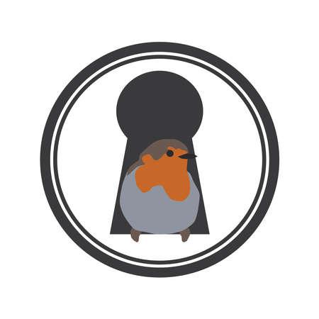 Robin bird in a keyhole