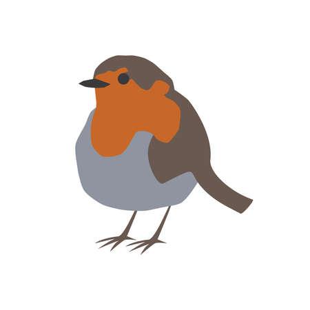 Robin bird orange vector portrait