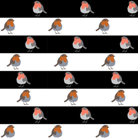 Robin Bird on black and white stripped background vector illustration