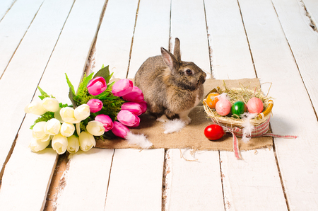 Easter bunny near a bouquet of tulips and colored eggs on a wooden white floor photo