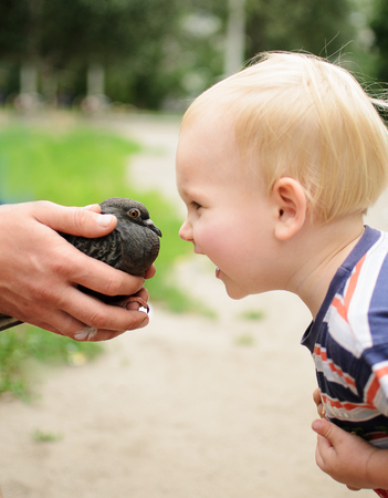 glad: Kid face to face with dove, glad to get acquainted Stock Photo