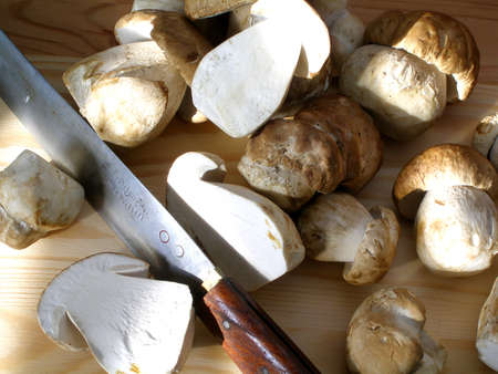 Checking the quality of the wild mushrooms on the cutting board in the sunset Stock Photo