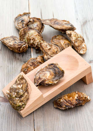 shanty: Oysters and shucking board on weathered wood table. Oysters from Prince Edward Island PEI, Canada.