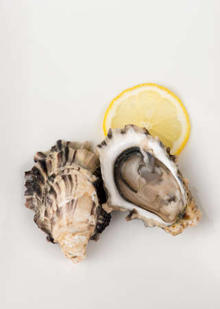 lemon wedge: Shucked oysters harvested in British Columbia, Canada,  on white background. Lemon wedge on the side. Stock Photo