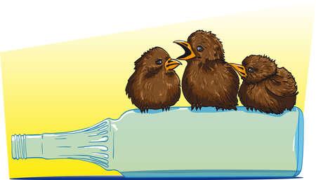 Three birds sitting on a glass bottle