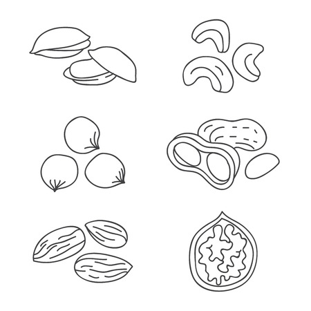 cashews: Nuts. Vector icons on a white background, hand-drawn.