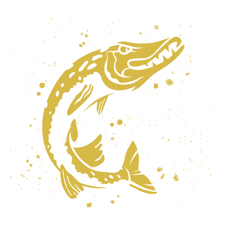 spinning: Predatory pike. The stylized image of fish. Vector illustration on white background with paint splashes. Concept design for fishing.