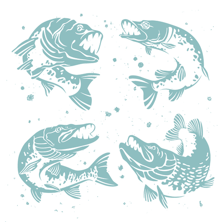Set of predatory pike. The stylized image of fish. Vector illustration on white background with paint splashes. Concept design for fishing.