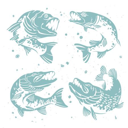 Zestaw drapieżnych szczupaków. Stylizowany wizerunek ryb. Ilustracja wektora na białym tle z plamy farby. Koncepcja koncepcji połowów. Ilustracje wektorowe