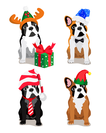 Cute dog of the Bulldog breed in a New Years cap. Vector illustration on white background.