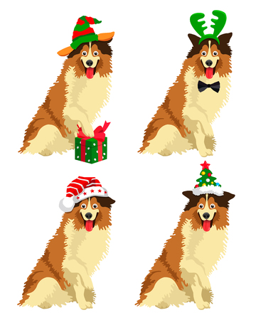 Cute Collie breed dog in a New Year hat. Vector illustration on white background.