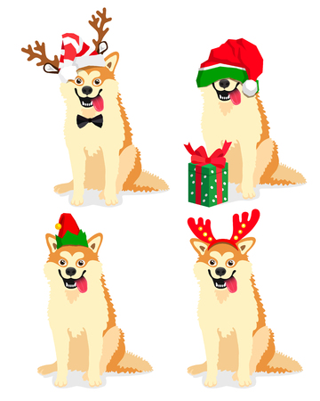 Cute dog of breed Akita Inu in a New Years cap. Vector illustration on white background. Friend of human. Symbol of the 2018. Illustration