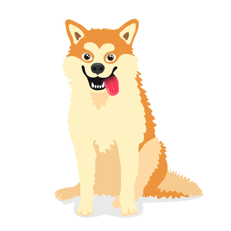 faithfulness: Cute dog of the breed Akita inu. Vector illustration on white background. Friend of human. Symbol of the new year 2018.