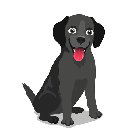 watchman: Cute dog ??of the breed Labrador. Vector illustration on white background. Friend of human. Symbol of the new year 2018.