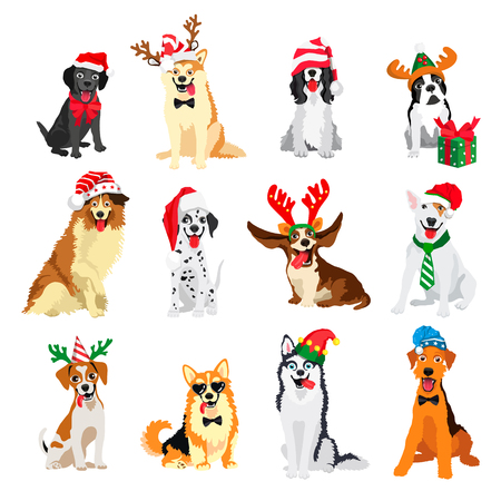 Set of 12 dogs of different breeds in New Years hats. Vector illustration on white background. Friend of human. Symbol of the 2018 Illustration