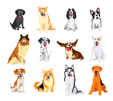 Set of 12 dogs of different breeds. Vector illustration on white background. Friend of human. Symbol of the new year 2018