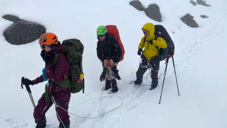 Three hikers with large backpacks and trekking poles walk in a bundle through the snow. Trekking in the Klyuchevskoy volcano park. Travel to the Kamchatka Peninsula.