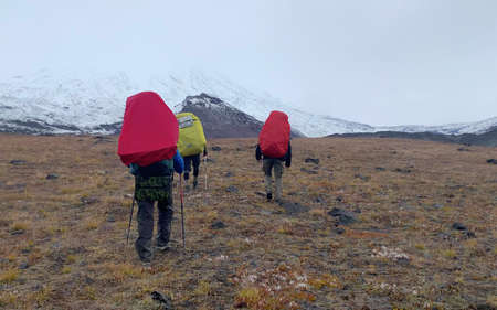 Climbers with large backpacks and trekking poles go to the volcanoes. Mountain climbing. Trekking in the Klyuchevskoy volcano park. Travel to the Kamchatka Peninsula.