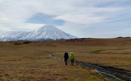 Two hikers with large backpacks go hiking to the volcanoes. Mountain climbing. Trekking in the Klyuchevskoy volcano park. Travel to the Kamchatka Peninsula.