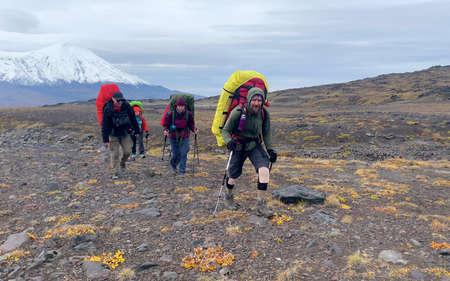 Tourists with large backpacks and trekking poles walk along the autumn tundra. Mountain climbing. Trekking in the Klyuchevskoy volcano park. Travel to the Kamchatka Peninsula.