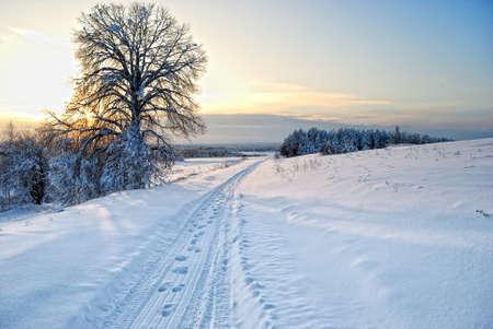 siberia: winter sunny frosty morning in Siberia Russia