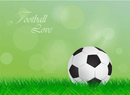 kickoff: soccer ball on a green lawn - vector illustration Illustration