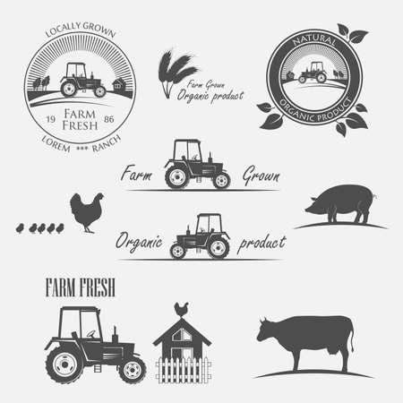 produce: Fresh Farm Produce and tractor - vector illustration