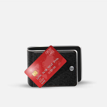 residue: Realistic vector credit card and Leather Wallet. Business and finance Illustration