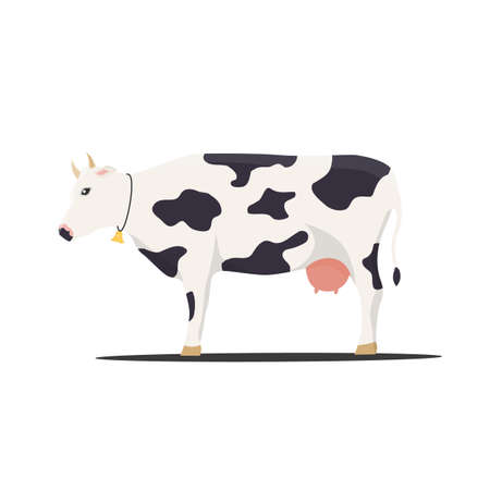 vector illustration cow on white background