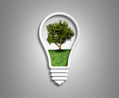 green eco energy concept, tree inside the light bulb