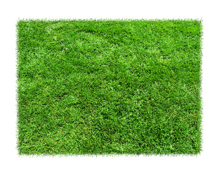 Empty green grass blank isolated model.