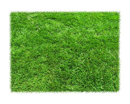 Leeg groen grasspatie geïsoleerd model.