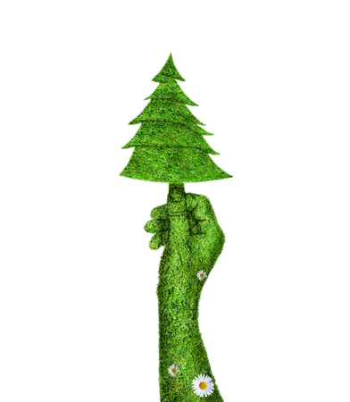 landscaped garden: Illustration green fir tree in the hand of man.