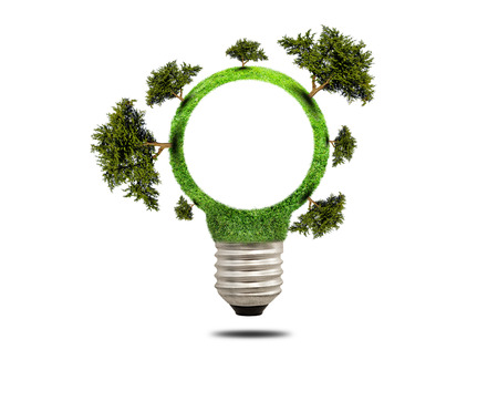 clean energy: Green grass light bulb with trees. Concept of green energy saving. Icon clean energy
