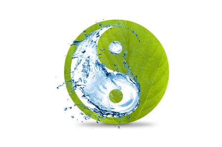 yin yang symbol: An ecological yin and yang symbol of water and a leaf isolated on white background. Yin and yang symbol green. Visualization of yin yang with leaves and water