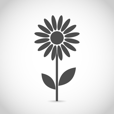 daisy vector: Abstract camomile on white background. Flower icon design. Flat daisy - vector illustration. Illustration