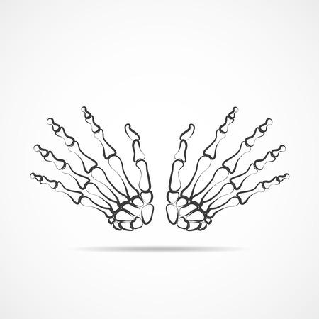 Bones Of Hand On Light Background Skeleton Hand Vector