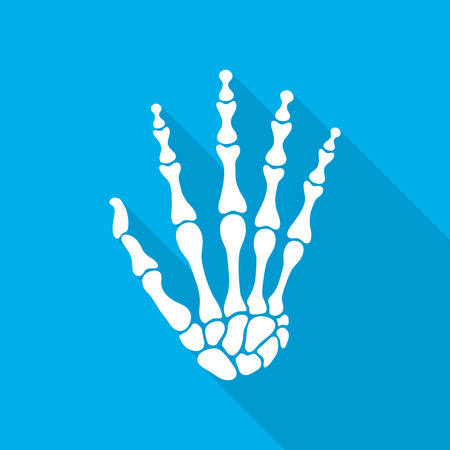 skeleton hand: Bones of hand with long shadow on blue background. Skeleton hand. Vector illustration. The skeleton human hand. Illustration